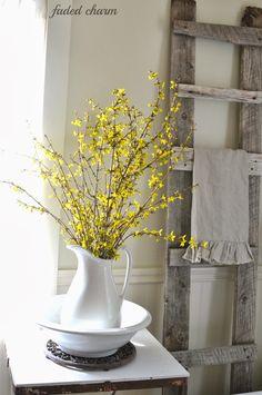 ~Forsythia's Yellow Cottage~
