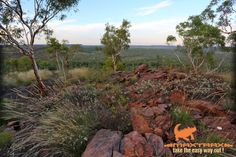 Great scenery on our trip north from Mt Isa