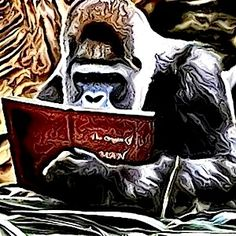 Chris the Story Reading Ape is a friend to Indie Authors across all genres and abilities. Apart from opening up his blog up to writers to promote themselves and their books, he also provides some e...