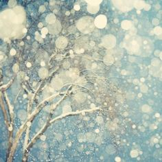 Winter Photography, Tree, Snowflakes, Abstract Snow Photograph, Blizzard, Blue, White, Fine Art Print - Snowblind. $30.00, via Etsy.