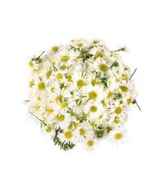 Ramo de novia campestre Aster   Bourguignon Floristas #weddingbouquet #bridalbouquet #weddingflowers #novias