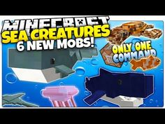 Minecraft | NEW COMMANDS | WORLD EDIT EGGS! | Only One Command (One Command Creation) - YouTube