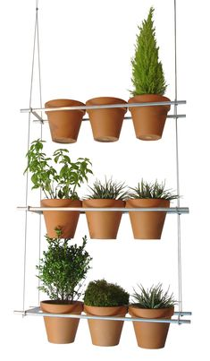 Vertical window garden -- that's a whole lotta green in a small space, love it!