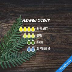 Heaven Scent - Essential Oil Diffuser Blend