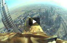 Dubai aus der Vogelperspektive