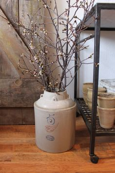 Old crock and branches