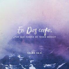 """""""En Dios alabaré su palabra; En Dios he confiado; no temeré; ¿Qué puede hacerme el hombre?"""" Salmos 56:4"""