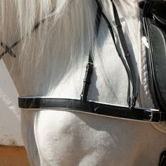 Pechopetral Marjoman recto modelo inglés forrado cuero doble.  Marjoman breastplate double leather pad. Show Jumping, Tack, Doubles Facts, Leather, Equestrian, Dressage