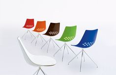 Jam  chairs by Calligaris