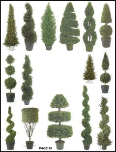 Silk Tree Warehouse Cedar Pine Cypress Boxwood Leucodendron Fir Cone Ball Juniper Evergreen Myrtle Potted Artificial Indoor Outdoor Spiral Topiary page 16 Outdoor Topiary, Topiary Plants, Topiary Garden, Topiary Trees, Garden Art, Indoor Outdoor, Potted Plants, Boxwood Garden, Garden Hedges