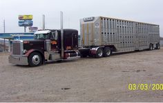 "Featured ""BULL HAULER"" - Bull Haulin.com is a American Bull Haulers Association"
