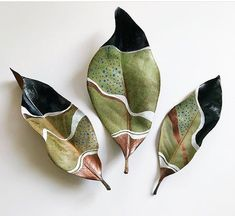 Painted Dried Magnolia Leaves by Samantha Dion BakerIt's been a little while since I've shared my leaves. Last night I paint… It's been a little while since I've shared my leaves. Last night I painted this trio of dried magnolia leaves while we played a Magnolia Leaves, Painted Leaves, Painting On Leaves, Leaf Paintings, Leaf Crafts, Leaf Art, Nature Crafts, Art Plastique, Ceramic Art
