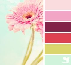 gerbera hues Color Palette by Design Seeds Colour Schemes, Color Patterns, Color Combos, Design Seeds, Arte Floral, Colour Board, Color Swatches, Color Stories, Grafik Design