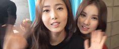 SinB and Eunha