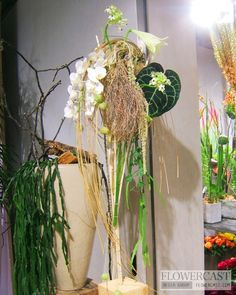 Flower shop of Gregor Lersh (Bad Neuenahr, Germany) http://flowercast.com/article.php?id=219