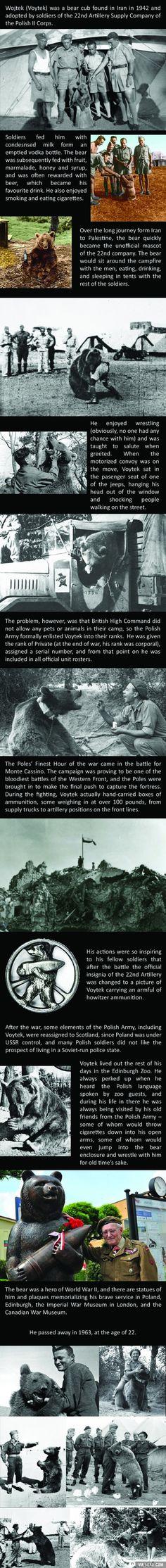 The amazing story of Voytek the Soldier Bear