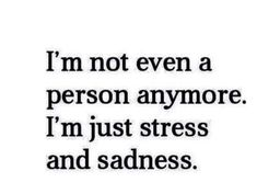 I'm not even a person anymore.. i'm just stress and sadness..