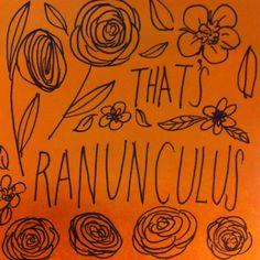 That's Ranunculus