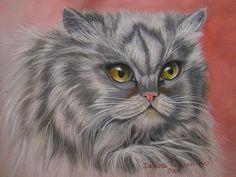 Kitten by Debora Penachione
