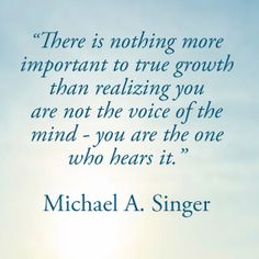 The Untethered Soul Talks by Michael A. Singer - Official Site