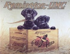 Amazon.com: Remington UMC Finders Keepers First in the Field Hunting Dogs Retro Vintage Tin Sign: Furniture & Decor