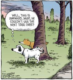 Male Urinating Behavior Funny Animal Comics, Funny Comics, Funny Animals, Word Pictures, Funny Pictures, Speed Bump Comic, Haha Funny, Hilarious, Dog Jokes