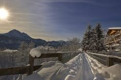 Naturparkregion Reutte Snow, Outdoor, Winter Landscape, Hiking, Places, Vacations, Nature, Traveling, Outdoors