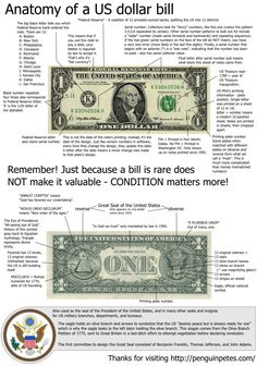 Anatomy of a U.S Dollar Bill Infographic