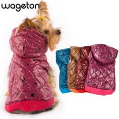 Dog Jacket, Hoodie Jacket, Puppy Coats, Puppy Clothes, Clothes Sale, Dog Pattern, Animal Design, Retail Design, Pets