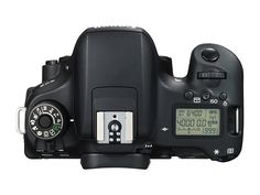 Amazon.com : Canon EOS Rebel T6s Digital SLR (Body Only) - Wi-Fi Enabled : Camera & Photo