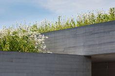 Andrew Berman Architect, Michael Moran · Watermill Residence