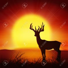 11824432-silhouette-of-deer-with-big-sun-nature-background-Stock-Photo-landscape.jpg (1299×1300)