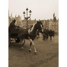 Horse and cart in Markt Bruges
