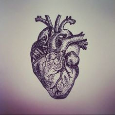 Anatomical heart tattoo.