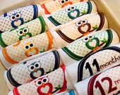 Set of 12 Month 2 Month Milestone Beautiful Owl Baby Boy Onesies, Perfect Baby Shower Gift, Comes with Gift Box, Paper Wrap and Gift Tag