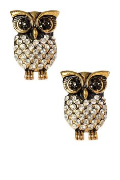 Stud Owl Earrings