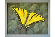 Tiger Swallow Tail Butterfly on OneKingsLane.com Kendall Tattoo, Swallow, Moth, Insects, Butterfly, Inspire, Artists, Animals, Animales