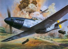 The Box Art for The 1/24 Mustang  By Roy Cross
