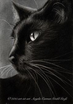 Charcoal Cat www.art-ist-art.blogspot.de