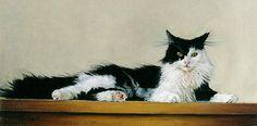 """Cat"" Robert C. Tracy Pastels 9 x 17"" 2001"