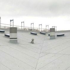 Diese 34 runden SkyVision CIRCULARS von GLASOLUX wirken wie aus dem Würfelbecher verteilt. Die unterschiedlichen Neigungen lassen das Dach wirken wie ein wankendes Schiff. Skylight, Windows, Roof Pitch