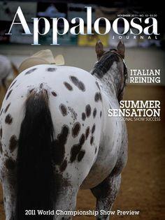 November 2011 Appaloosa Journal  www.appaloosajournal.com