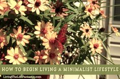How to Begin Living a Minimalist Lifestyle (don't be scared -- it's not as radical as you probably think!)