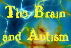 Autism and the Brain.  Here are a few things I learned about the brain at an Autism Conference I attended recently.  It was pretty eye opening for me.  www.playwithjoy.com. For more autism pins visit pinterest.com/playwithjoy