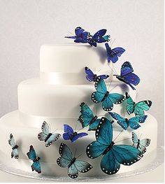 Swap for purple and yellow butterflies?