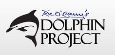 Follow Ric O'Barry as he travels the world to end dolphin exploitation and slaughter.  Click for live stream.
