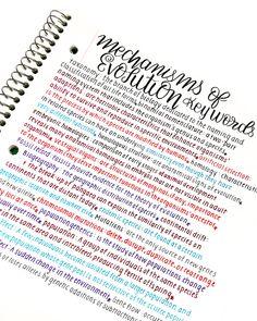 Handwriting Analysis – Handwriting Is Brain Writing – Improve Handwriting Handwriting Examples, Perfect Handwriting, Improve Your Handwriting, Improve Handwriting, Handwriting Styles, How To Write Neater, Handwriting Analysis, How To Write Calligraphy, Pretty Notes