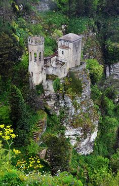 Erice castle, Sicily - I love the forest it's surrounded in.