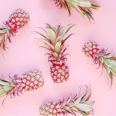 I love this print. Katt 2017 Pineapples were an inspiration for the Pre Fall beachwear collection. Print by Matthew Williamson whose work links to the theme ethnic culture on textile design for my personal study. Motif Tropical, Tropical Vibes, Photocollage, Everything Pink, Glass Animals, Pink Aesthetic, Pastel Pink, My Favorite Color, Textile Design