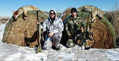 two successful coyote hunters with their two coyotes they killed Predator Hunting, Coyote Hunting, Hunting Tips, Deer Hunting, Turkey Roost, Varmint Hunting, Turkey Calling, Turkey Hunting, Like You